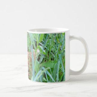Chicken in the Grass Mugs