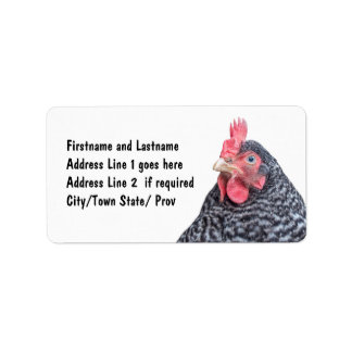 Chicken Picture Barred Rock Laying Hen Label