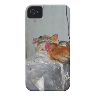Chickens Blackberry Phone Case iPhone 4 Cases