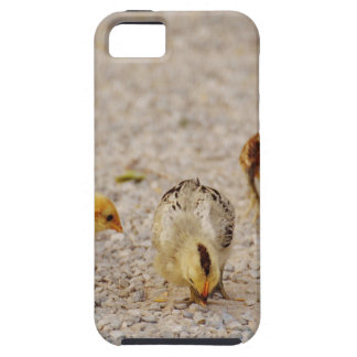 Chicks #2 iPhone 5 cases