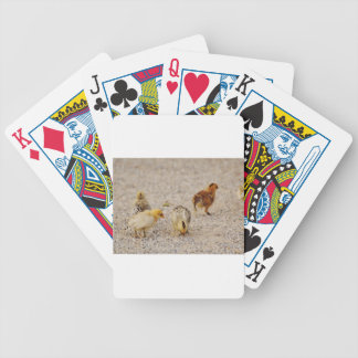 Chicks #2 poker deck