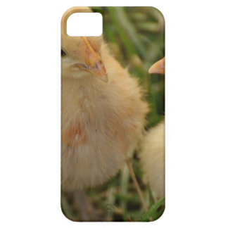 Chicks iPhone 5 Case