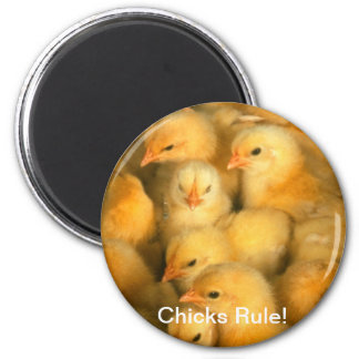 Chicks Rule! Baby Chick Chicken 6 Cm Round Magnet