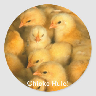 Chicks Rule! Baby Chicks Chick Chicken Chickens Round Sticker