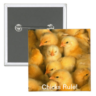 Chicks Rule Baby Chicks Humorous Humor Funny Pinback Button