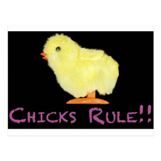 Chicks Rule Side Post Card