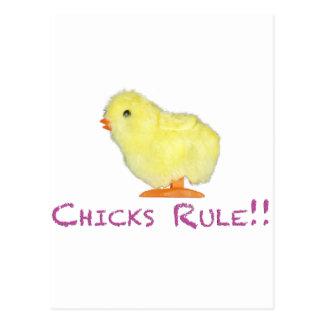 Chicks Rule Side Transparent Postcard