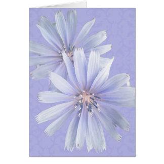 Chicory - Cornflower - Wildflower Card