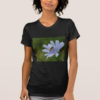 Chicory T-Shirt