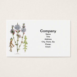 Chicory Vintage Botanical Business Card