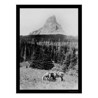 Chief Mountain from Glacier National Park 1925 Poster