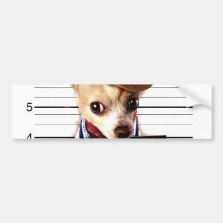 chihuahua cowboy - sheriff dog bumper sticker