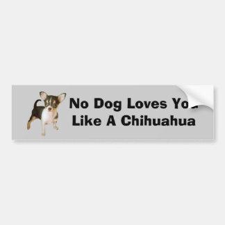 Chihuahua Cutie Bumper Sticker