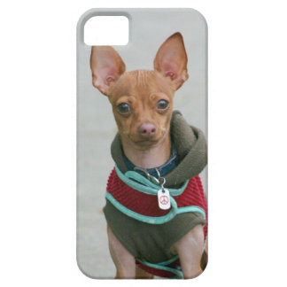 Chihuahua dog barely there iPhone 5 case