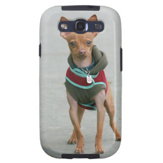 Chihuahua dog galaxy s3 cover