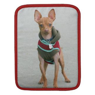 Chihuahua dog iPad sleeves