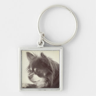Chihuahua Dog Portrait Silver-Colored Square Key Ring