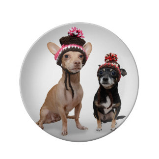 Chihuahua Dogs With Hats Photo Porcelain Plate