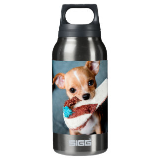 chihuahua flip flops insulated water bottle