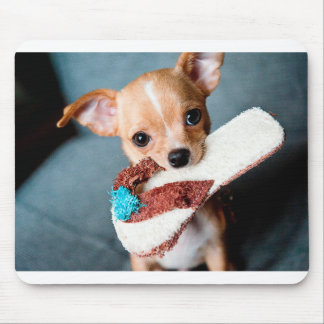 chihuahua flip flops mouse pad
