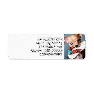 chihuahua flip flops return address label