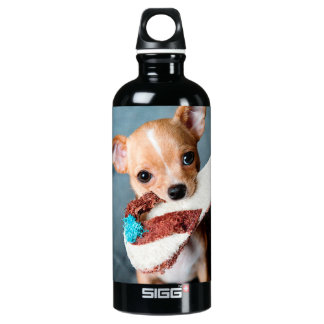 chihuahua flip flops water bottle