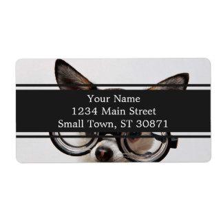 Chihuahua glasses - dog eyeglasses