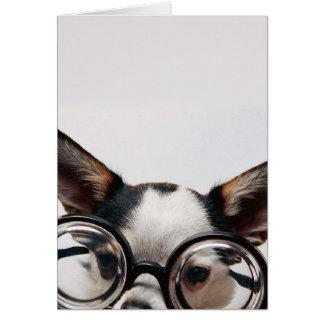 Chihuahua glasses - dog eyeglasses card