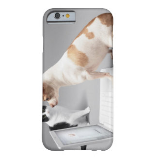 Chihuahua looking into the screen of a laptop barely there iPhone 6 case