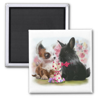 Chihuahua puppy and black rabbit magnet