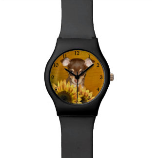 Chihuahua puppy and sunflowers watch