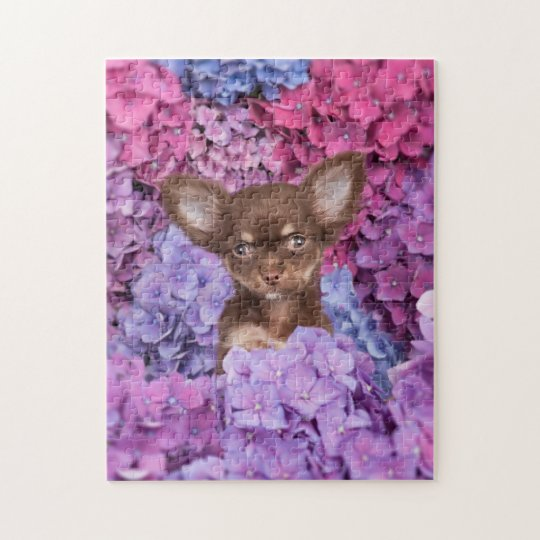 Chihuahua puppy between the hydrangeas jigsaw puzzle