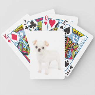 Chihuahua puppy bicycle playing cards