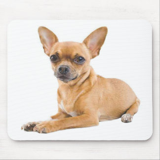 Chihuahua Puppy Dog Canine Mouse Pad