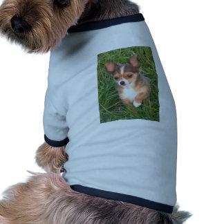 Chihuahua puppy dog t-shirt