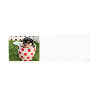 chihuahua-puppy in cup return address label