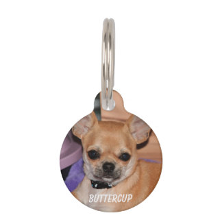 Chihuahua Round Small Pet Tag With Photo