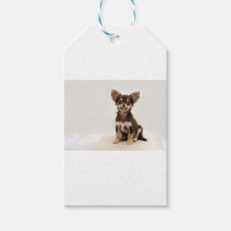Chihuahua Small Dog Gift Tags