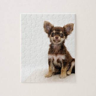 Chihuahua Small Dog Jigsaw Puzzle