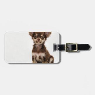 Chihuahua Small Dog Luggage Tag
