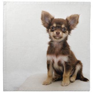 Chihuahua Small Dog Napkin