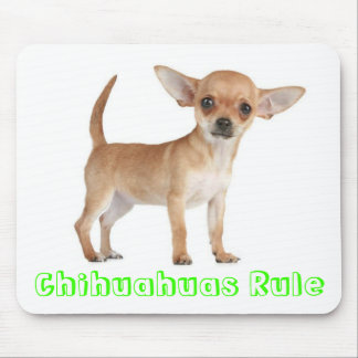 Chihuahuas Rule Puppy Dog Computer Mouse Pad