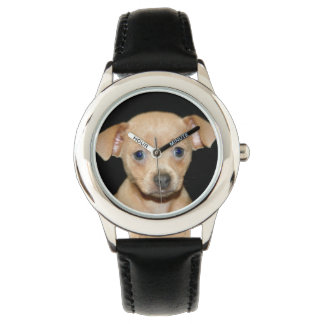 chihuhua puppy wrist watch