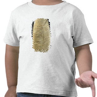 Child in swaddling clothes tee shirt