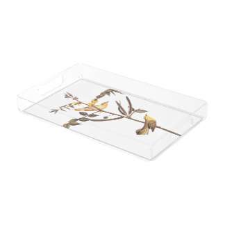 Children's Warbler Bird Serving Tray