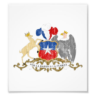 Chile Coat Of Arms Photograph