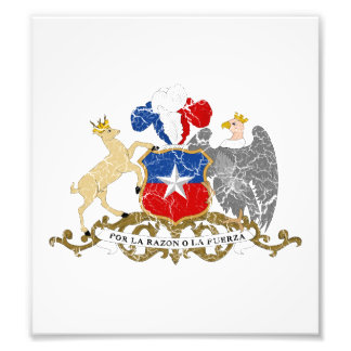 Chile Coat Of Arms Photographic Print