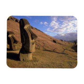 Chile, Easter Island. Hillside with Moai Rectangular Photo Magnet