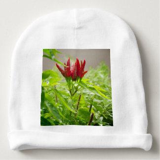 Chili flower baby beanie