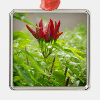 Chili flower metal ornament